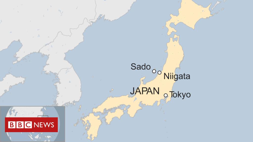 Dozens hurt as Japan ferry 'hits whale'
