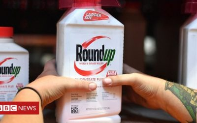 US jury awards $2bn weedkiller damages