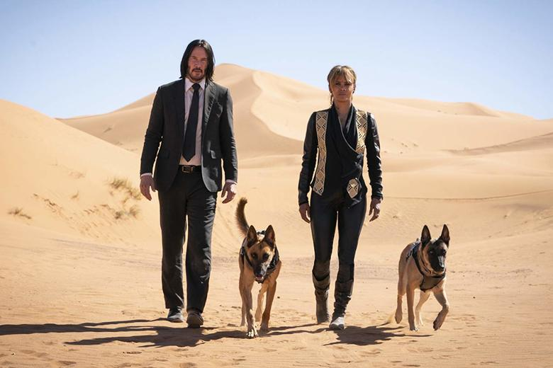 John Wick 3: The dog really climbed the wall. – Slate