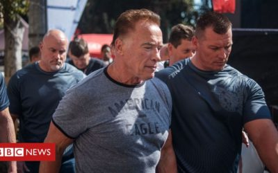 Schwarzenegger attacked in South Africa