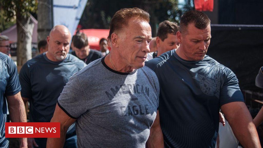Schwarzenegger attacked in South Africa