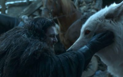 """Twitter reacts to Jon and Ghost's tender moment in """"The Iron Throne"""" – Winter is Coming"""