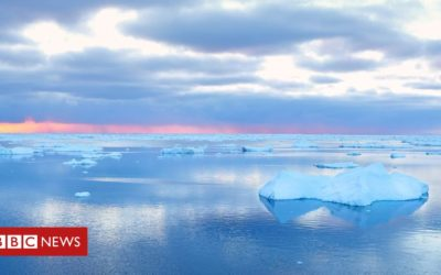Sea level rise could be much larger than expected