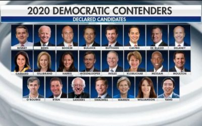 Crowded field of 2020 Democrats one month away from first presidential debates