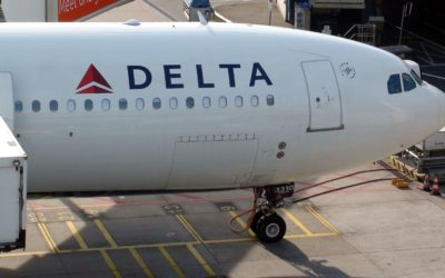Delta passenger suing over alleged attack by emotional-support dog: report