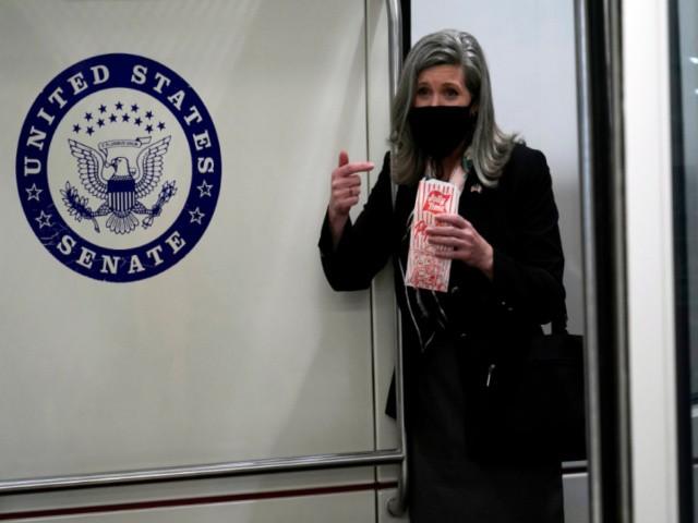 Joni Ernst: Earmarks a 'Belated Valentine' for D.C. Swamp