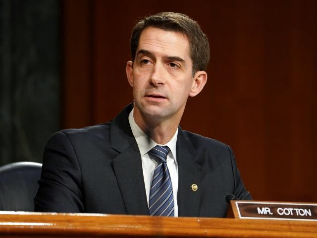 Senate GOP: Biden Amnesty Floods U.S. Workforce During Coronavirus Crisis