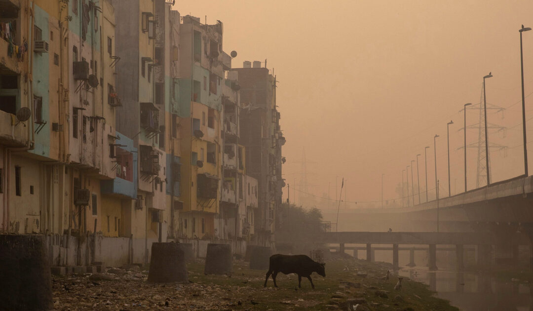 New Delhi world's most polluted capital for the third year: Study