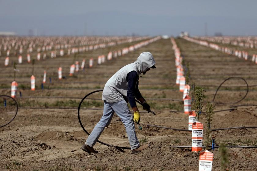 Wells dry up, crops imperiled, farmworkers in limbo as drought grips San Joaquin Valley...
