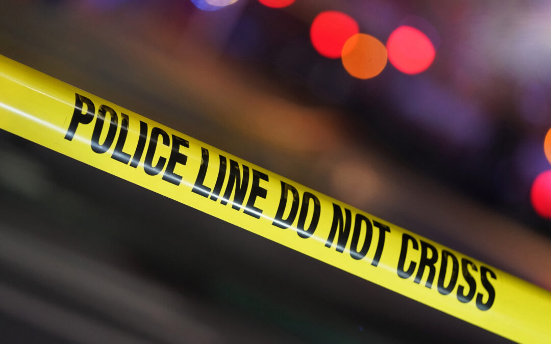 Skeletal remains pulled from Long Island marsh: cops