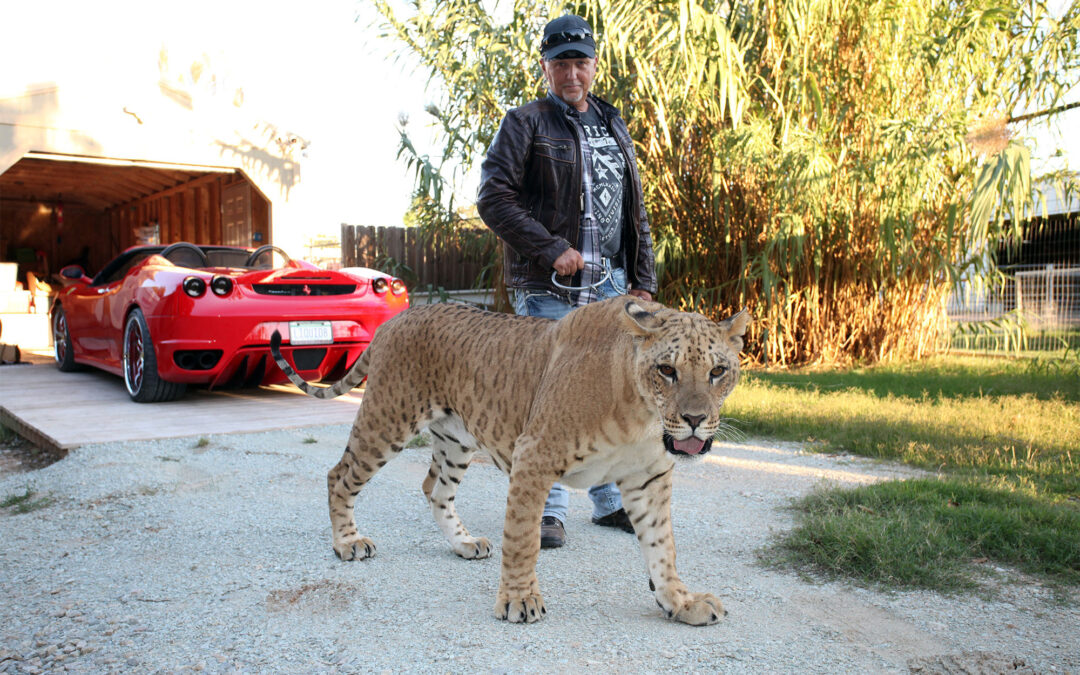 'Tiger King' star Jeff Lowe wanted in Vegas for skipping court date: report