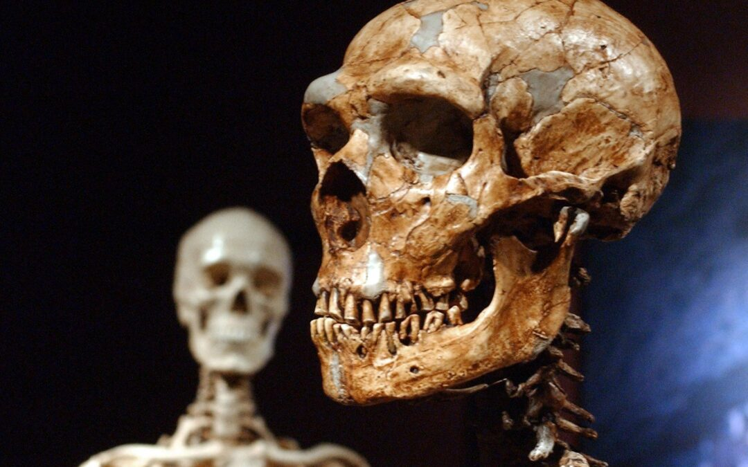 STUDY: Just 7% of our DNA is unique to modern humans...