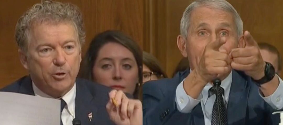 'You Do Not know What You're Talking About': Rand Paul Clashes With Fauci In Tense Capitol Hill Hearing