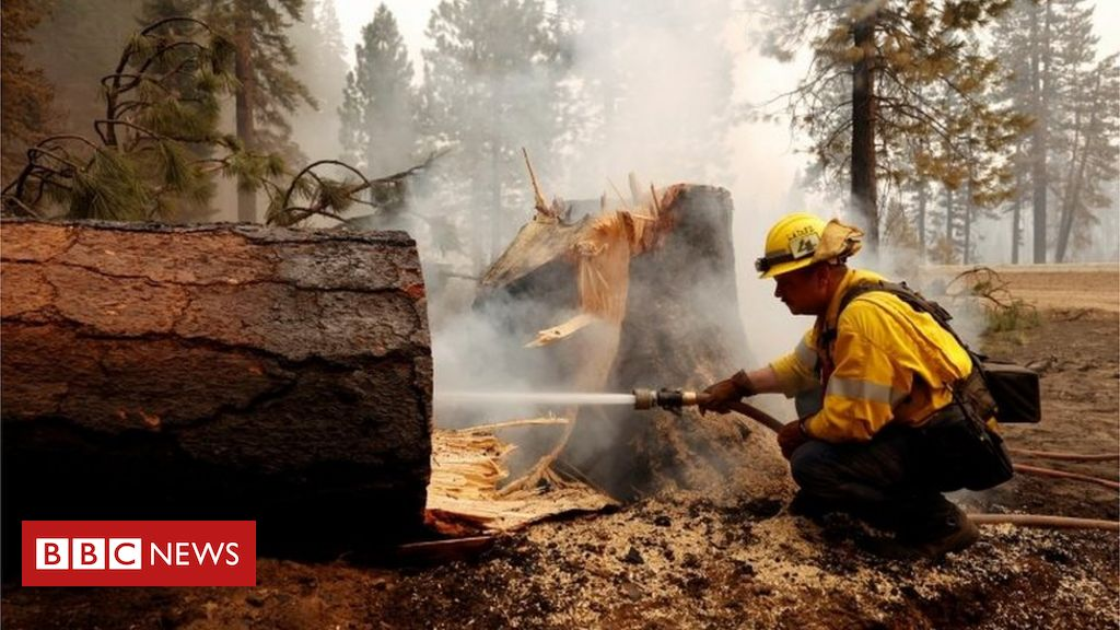 Dixie Fire: Firefighters tackles historic California wildfire