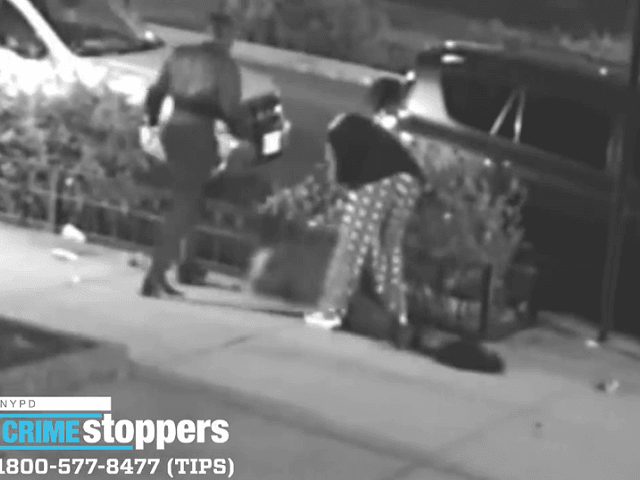 VIDEO: NYC Woman Beaten, Stomped in Head During Alleged Robbery